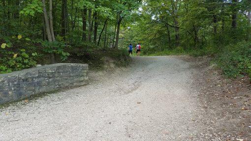 Limestone Path Stone