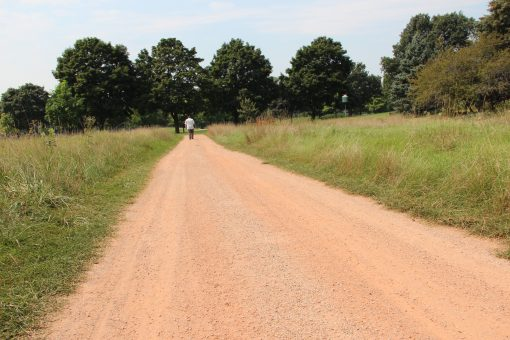 Trailblaze Pathway Stone