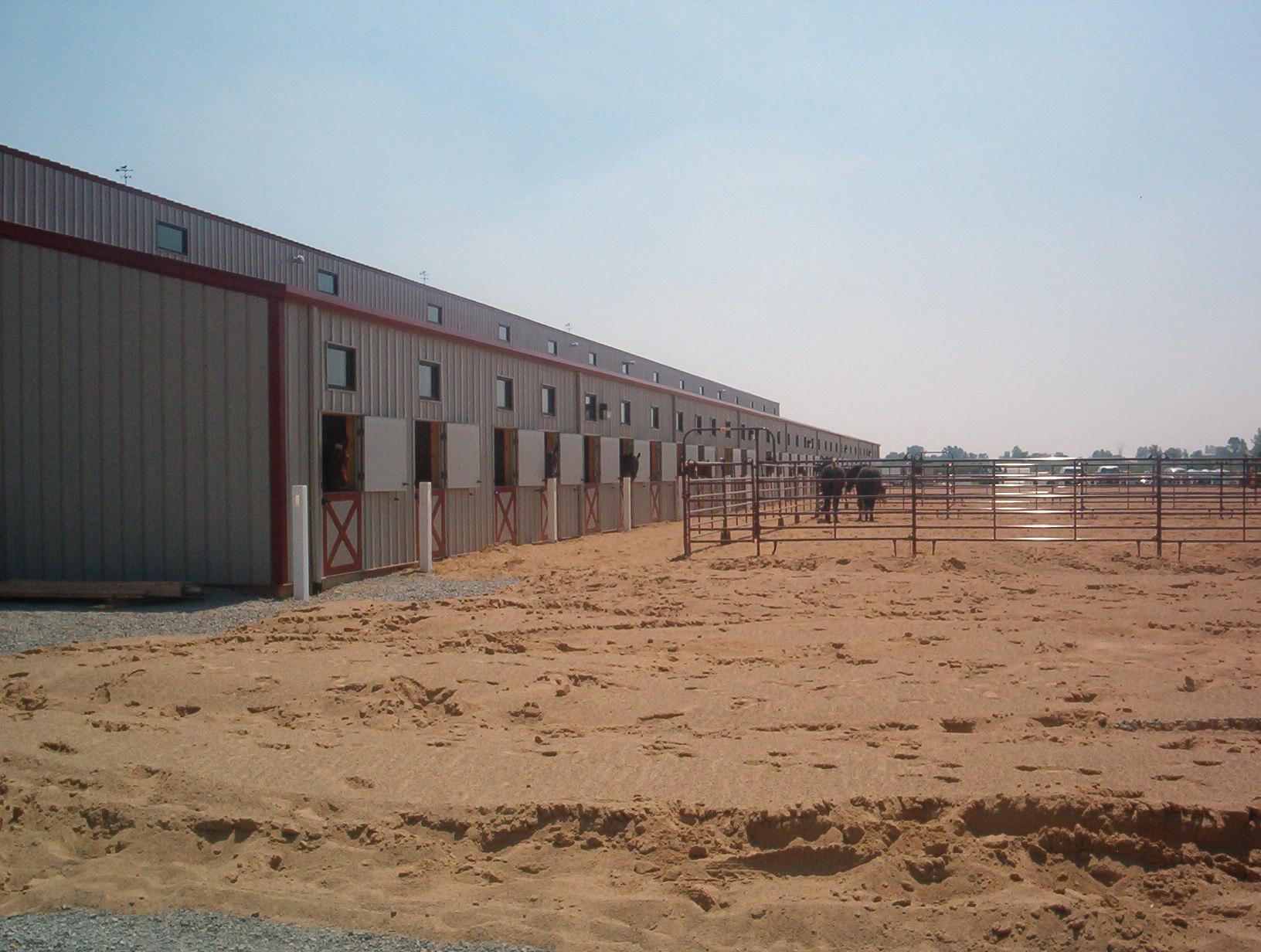 Equestrian Arena Sand