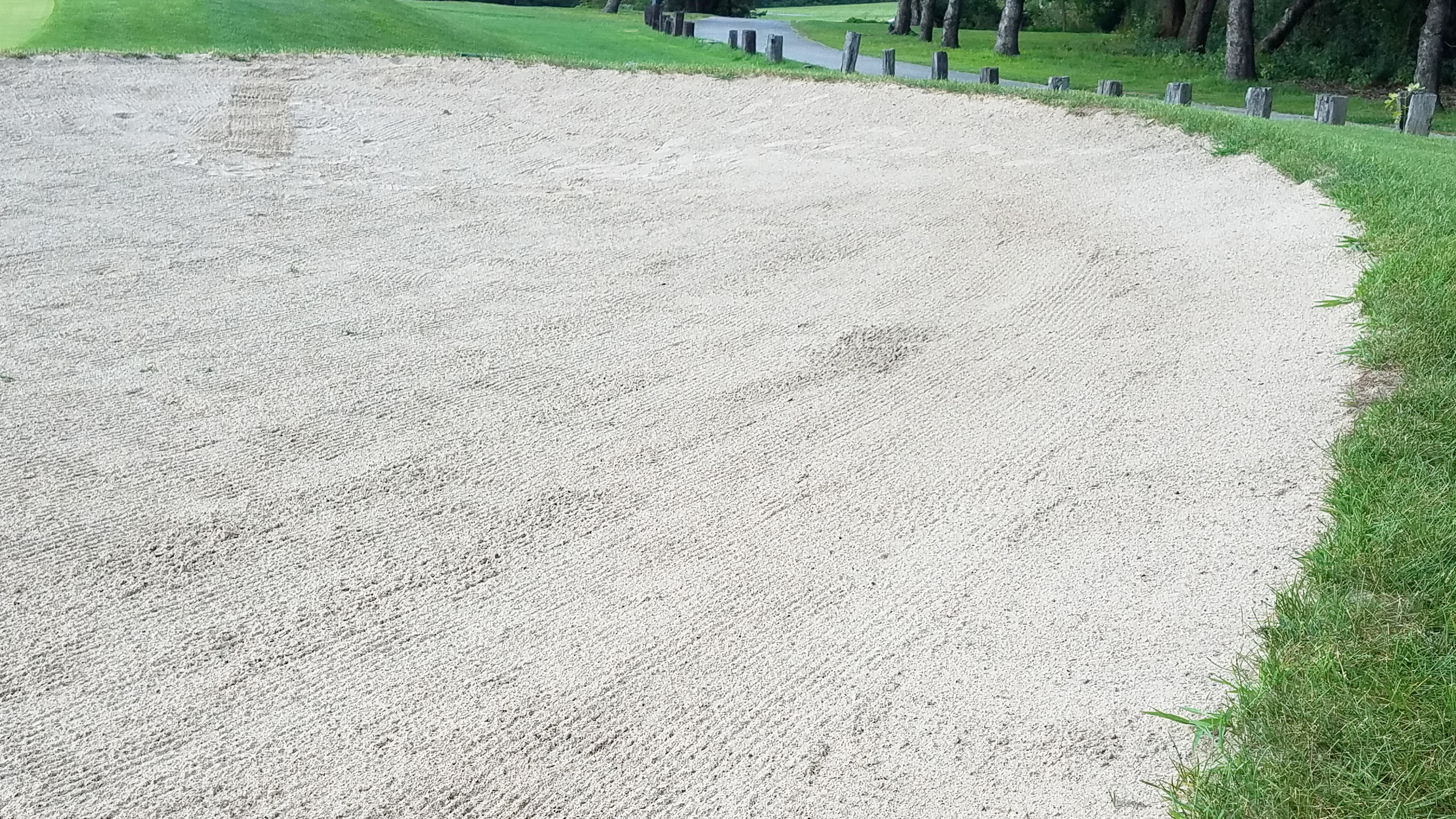 Northeast Illinois Bunker Sand