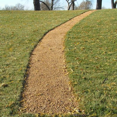 Brown Granite Pathway Stone